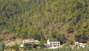 castilloaltamira13